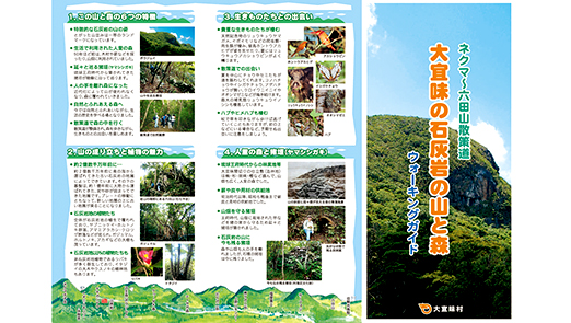 Nekuma ~ Muta mountain walking trail「Limestone mountains and forests of Ogimi」